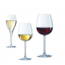 Chef & Sommelier Oenologue Expert wijnglazen