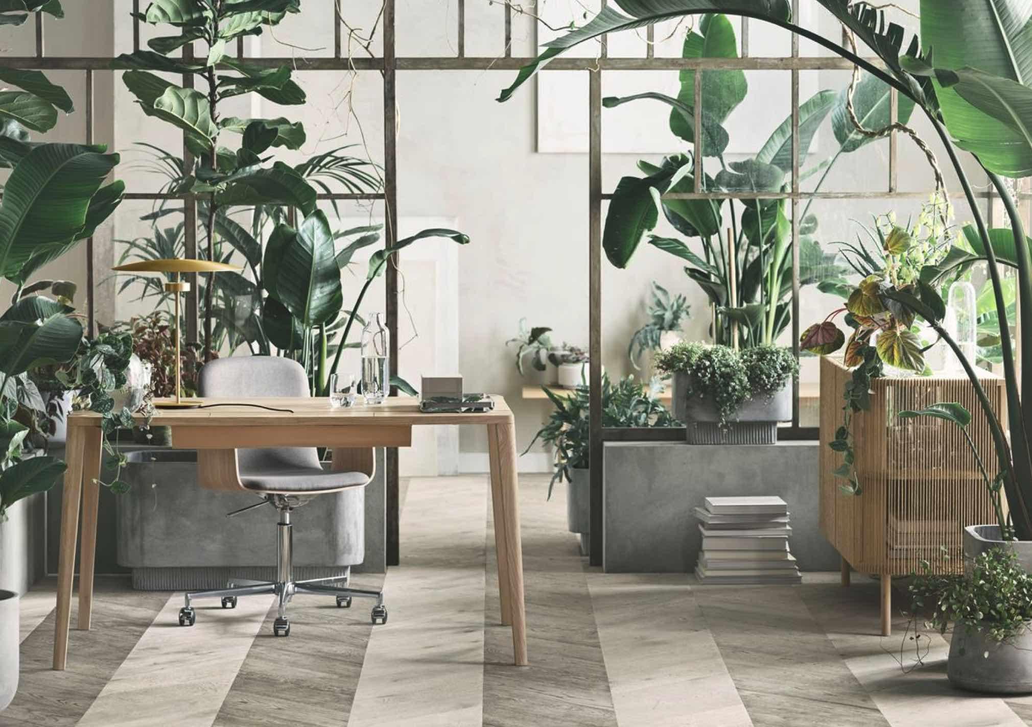 Bolia Home Office Ninove