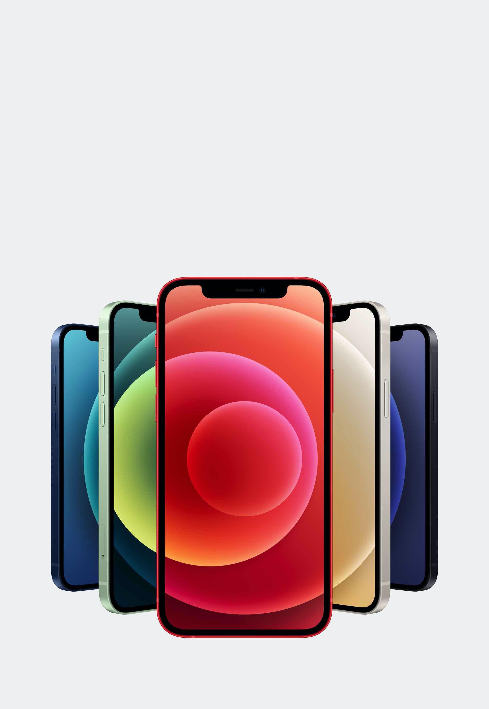 iPhone 12 Ninove